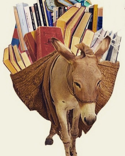 donkey-and-books